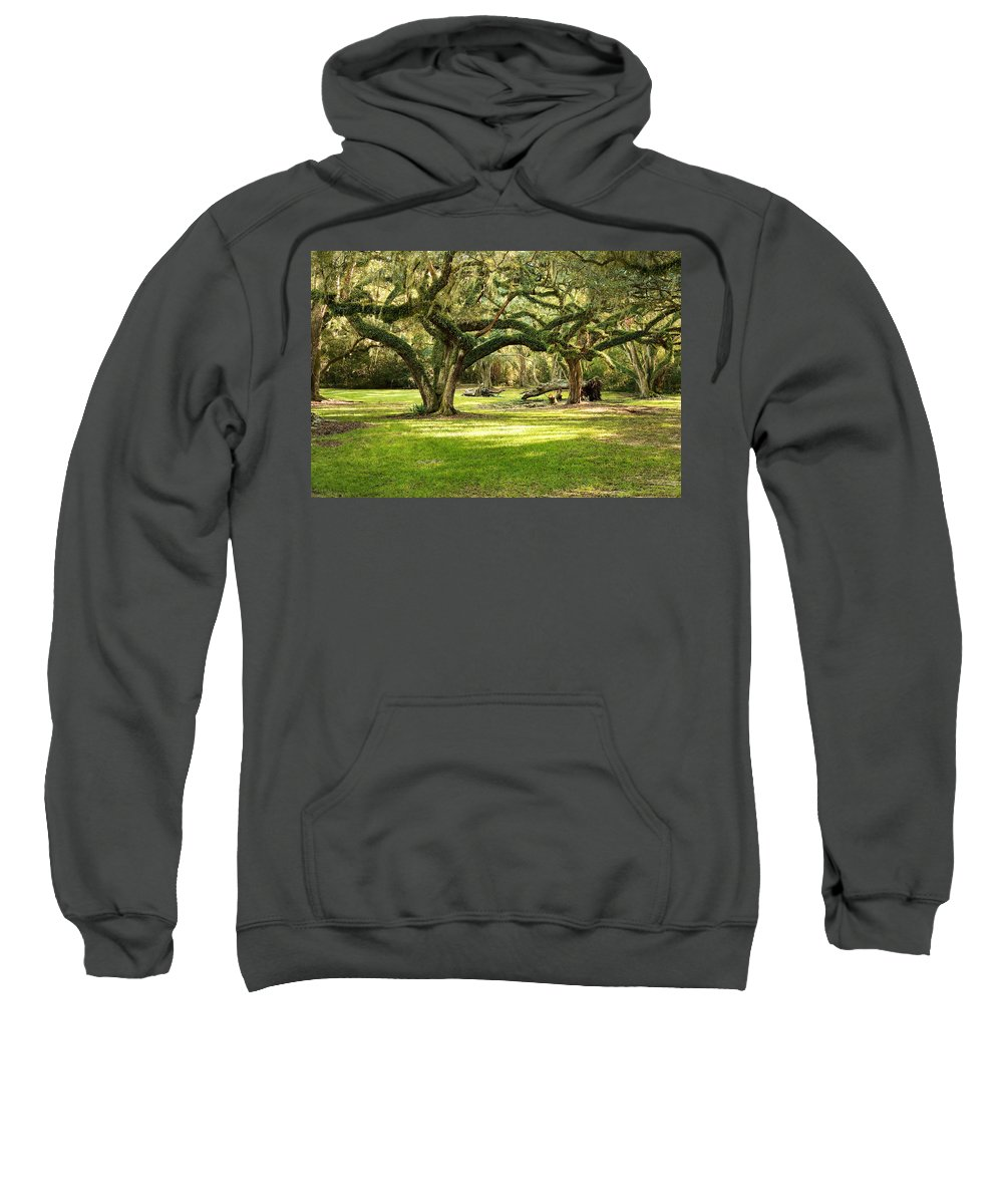 Oak Trees Sweatshirt featuring the photograph Avery Island Oaks by Scott Pellegrin