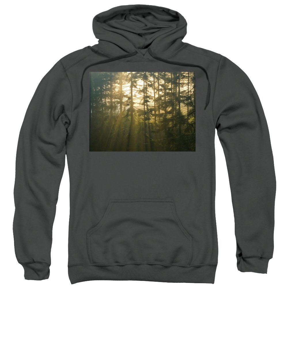 Light Sweatshirt featuring the photograph Awe by Daniel Csoka