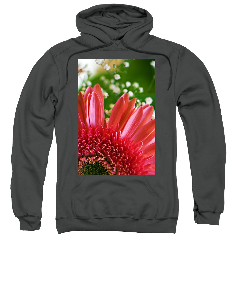 Babies Sweatshirt featuring the photograph Babies Breath and Gerber Daisy by Marilyn Hunt
