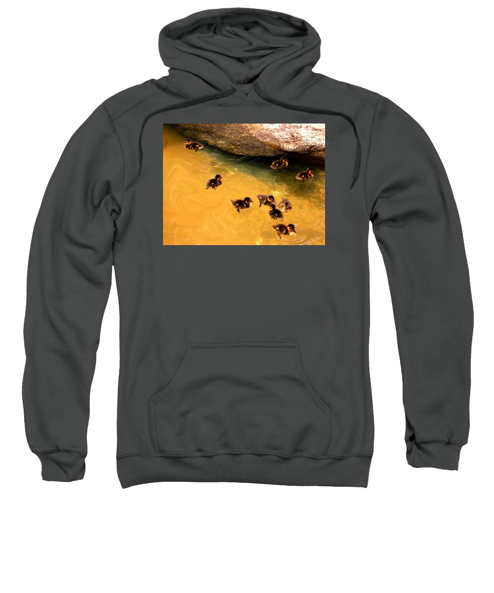 Babies Sweatshirt featuring the painting Baby Ducks by Sherri Trout