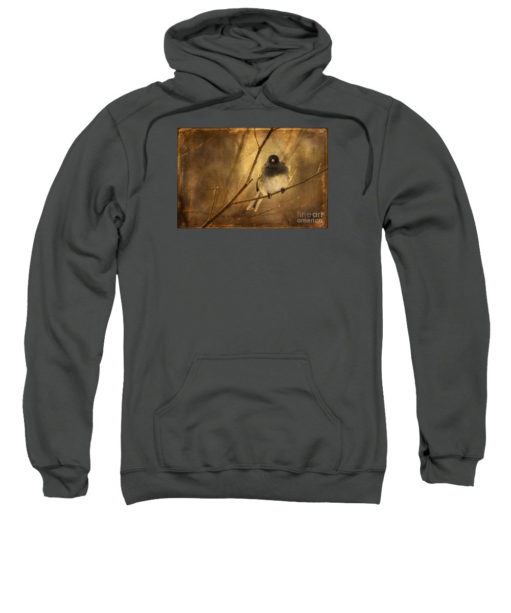 Bird Sweatshirt featuring the photograph Backlit Birdie Being Buffeted by Lois Bryan