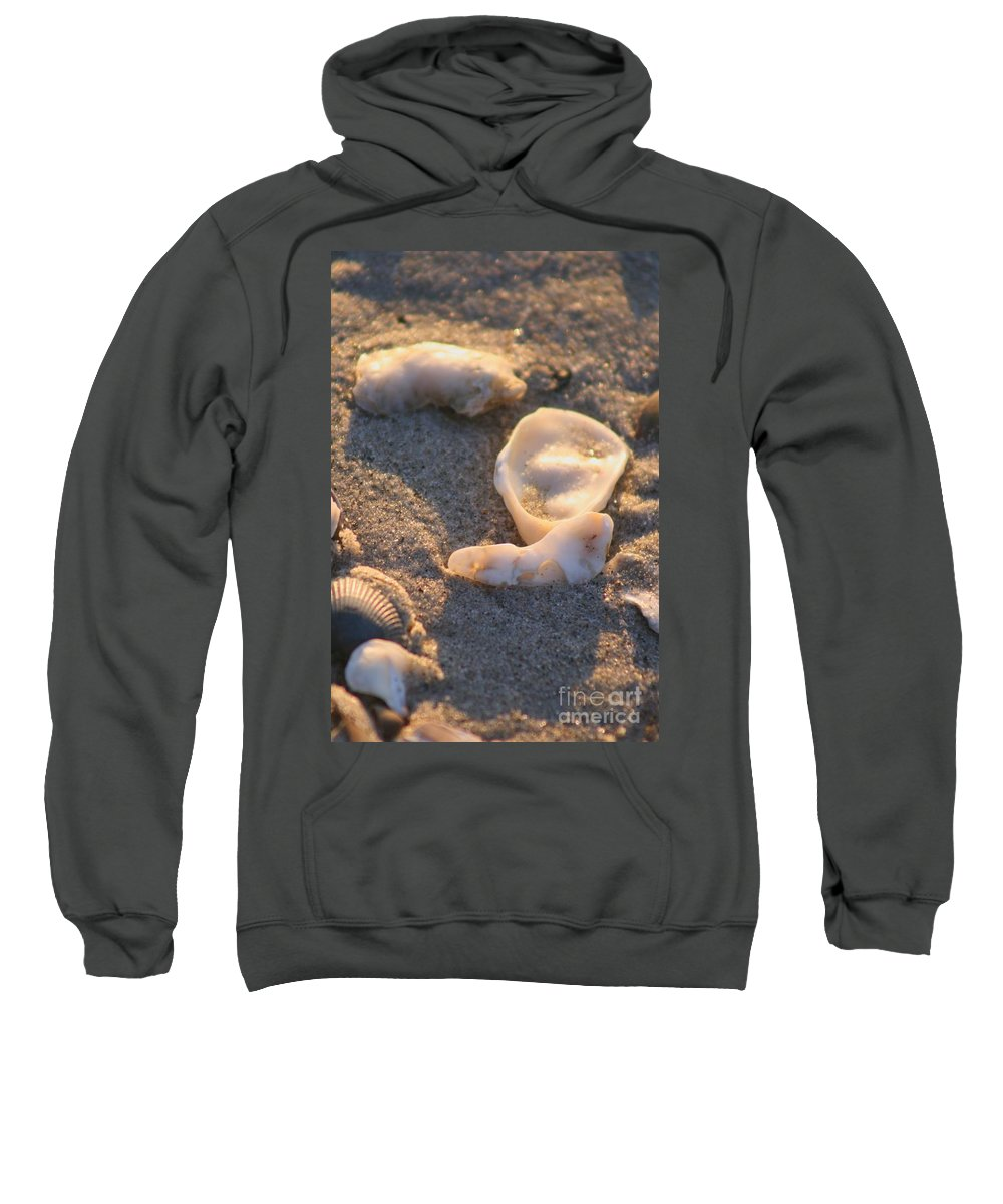 Shells Sweatshirt featuring the photograph Bald Head Island Shells by Nadine Rippelmeyer