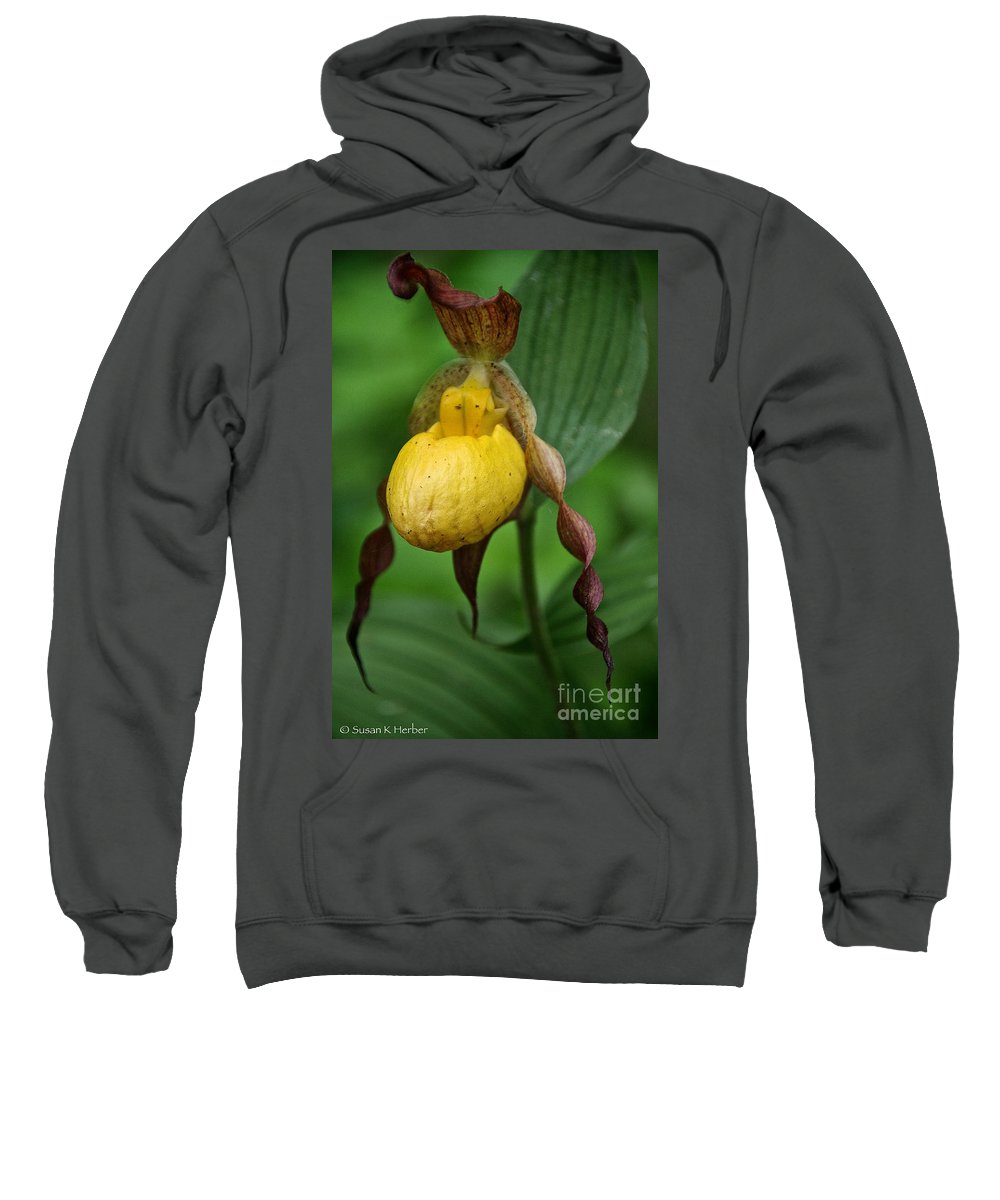 Flower Sweatshirt featuring the photograph Banana Curls by Susan Herber