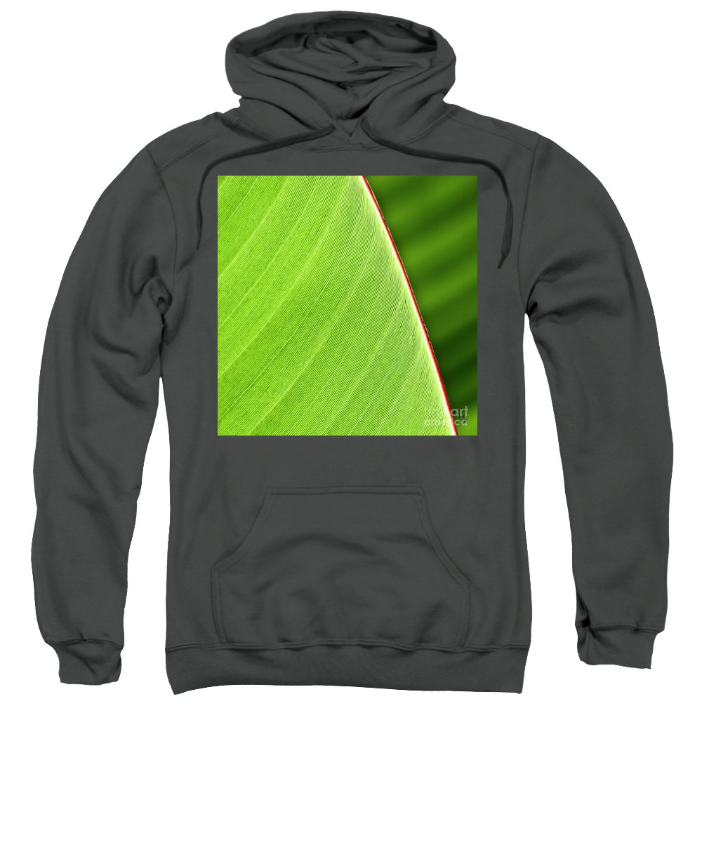 Leaf Sweatshirt featuring the photograph Banana Leaf by Heiko Koehrer-Wagner