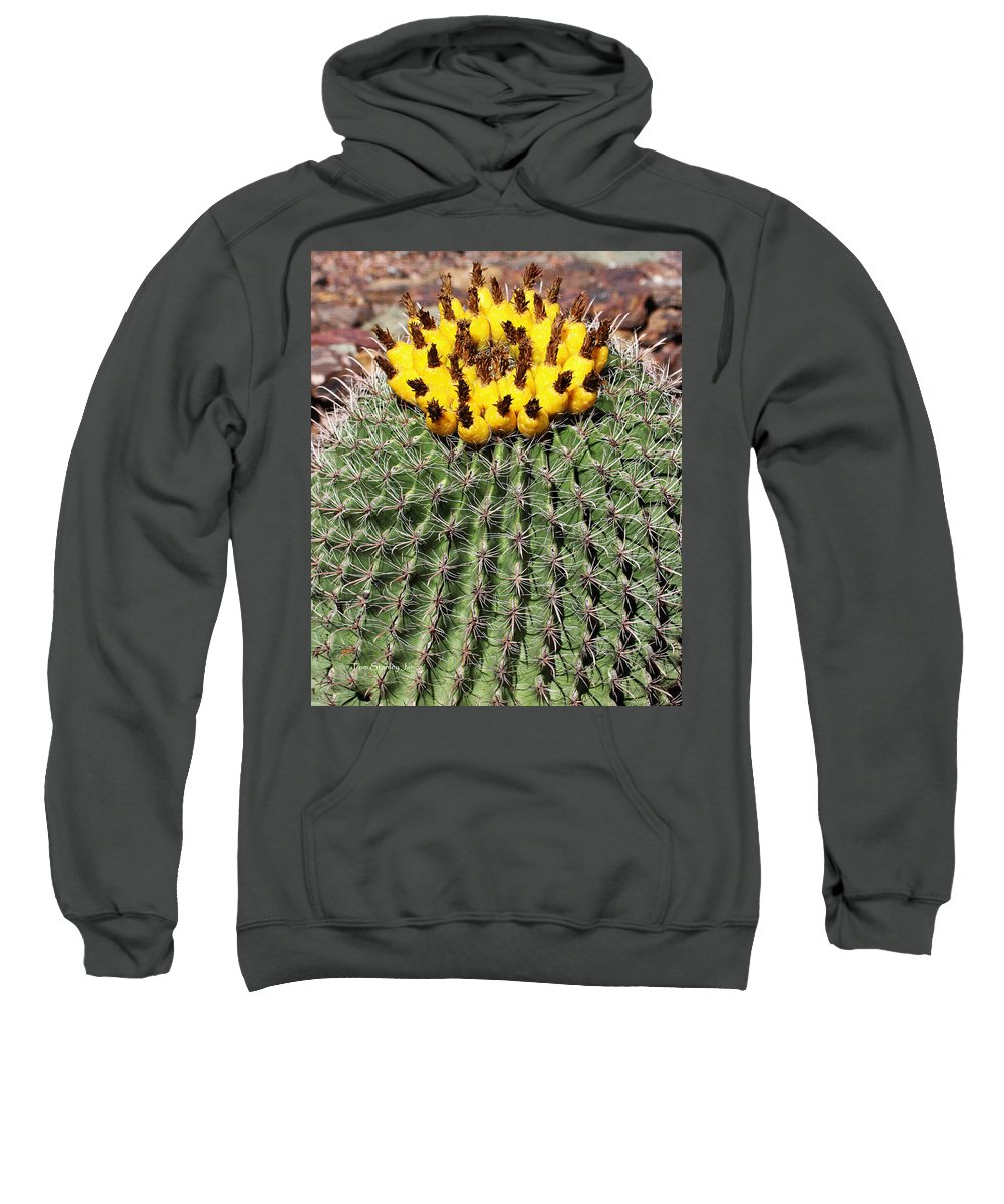 Barrel Cactus With Yellow Fruit Sweatshirt featuring the photograph Barrel Cactus With Yellow Fruit by Tom Janca