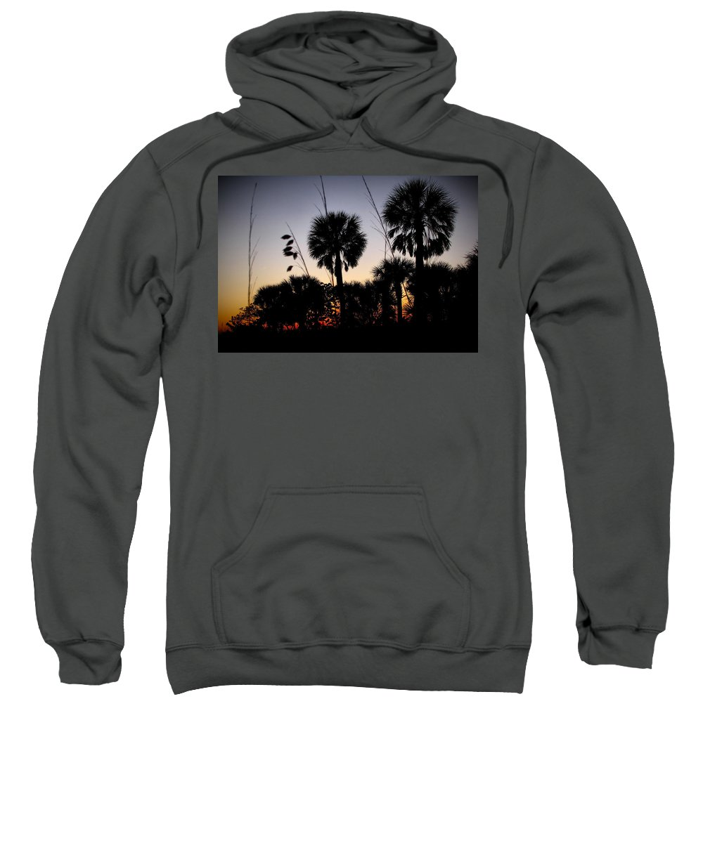 Beach Sweatshirt featuring the photograph Beach Foliage At Sunset by Phil Penne
