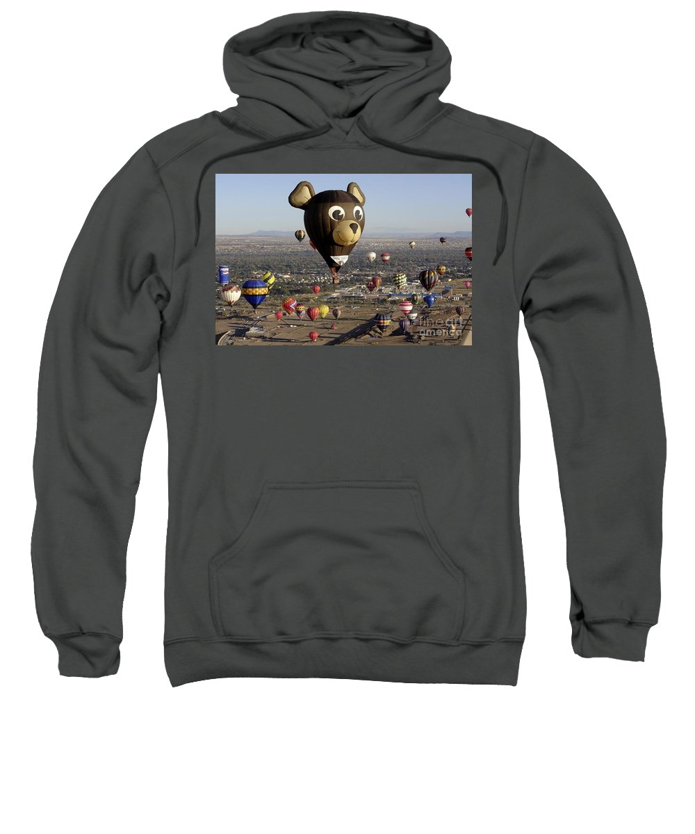 Albuquerque Sweatshirt featuring the photograph Bear by Mary Rogers