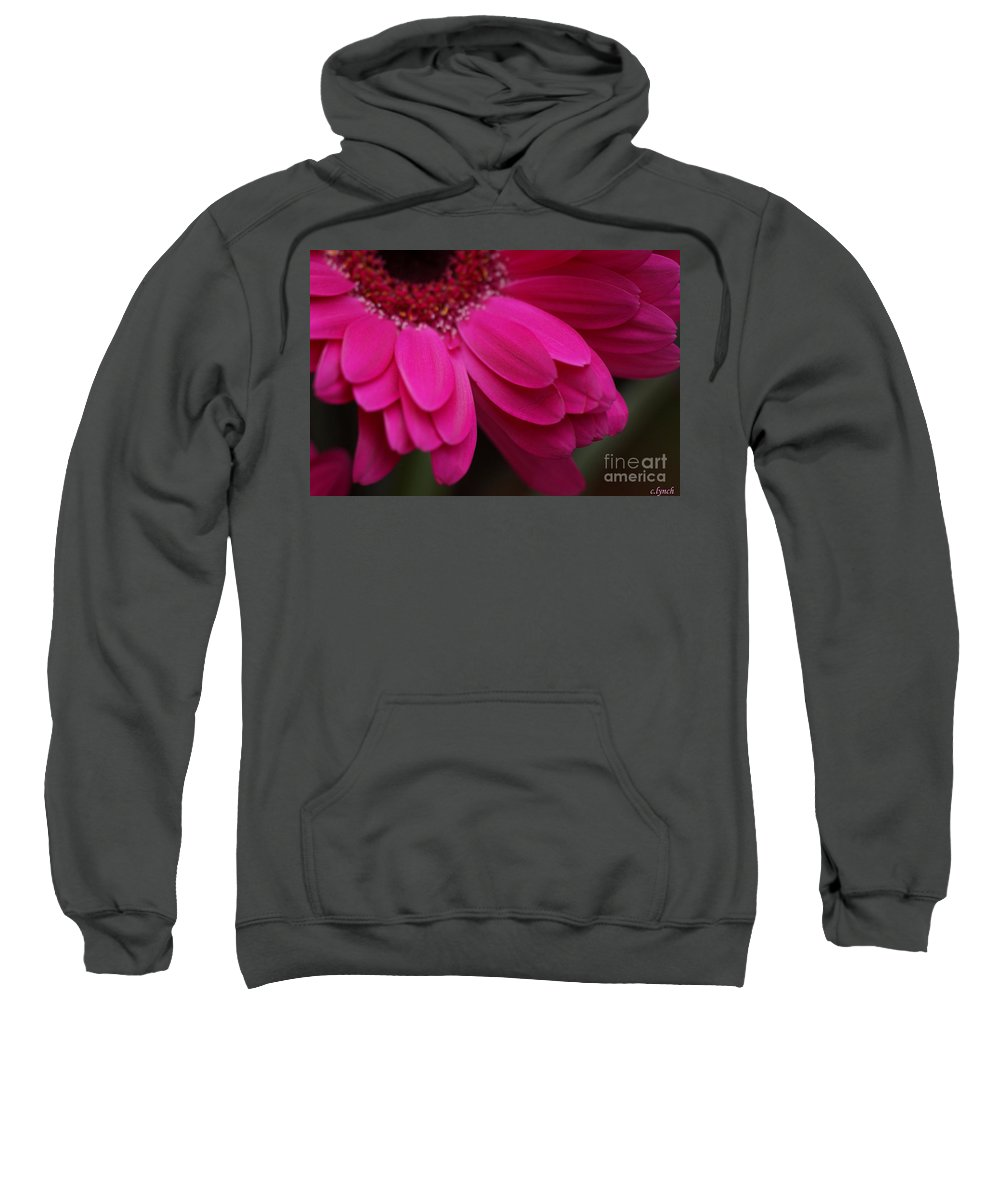 Pink Sweatshirt featuring the photograph Beautiful Petals by Carol Lynch