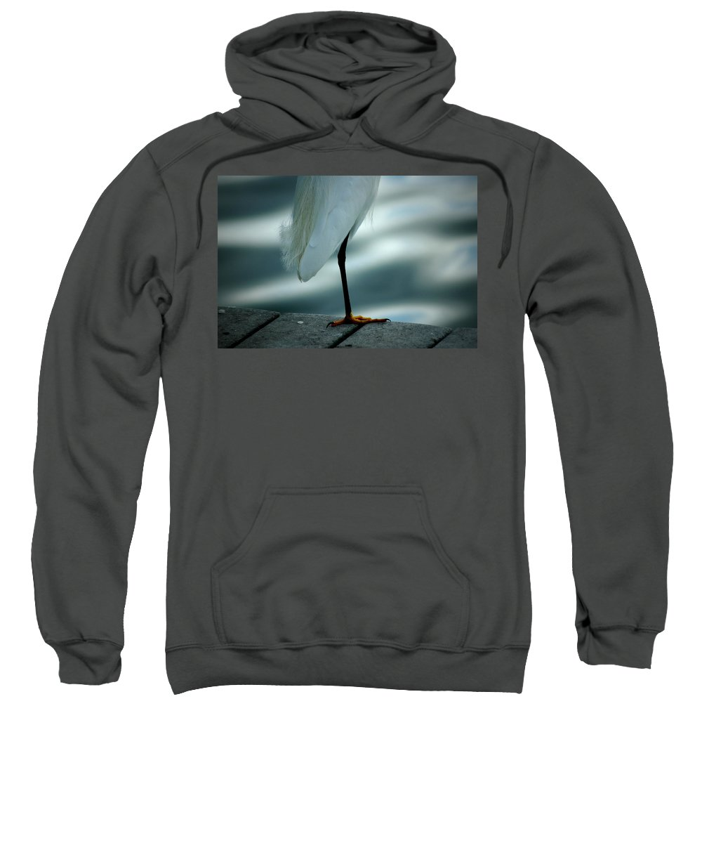 Egret Sweatshirt featuring the photograph Bed Time by David Weeks