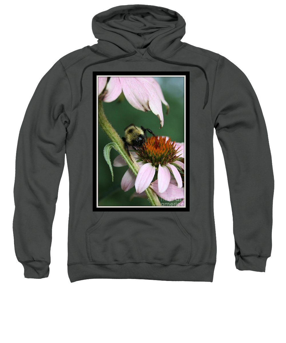 Bumble Bee Sweatshirt featuring the photograph Bee Brunch I by Brenda McGee-Paap