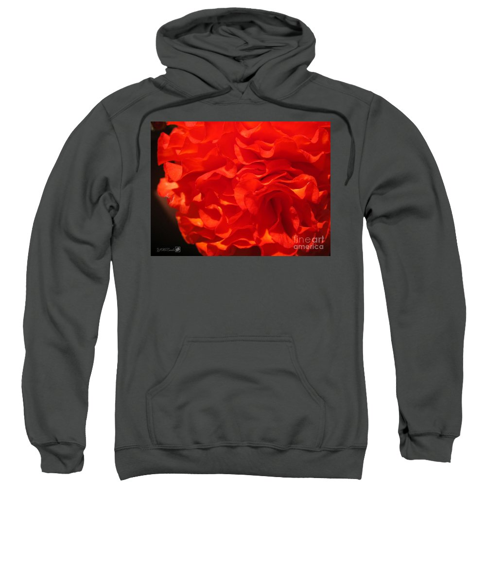 Begonia Sweatshirt featuring the photograph Begonia Named Nonstop Apricot by J McCombie