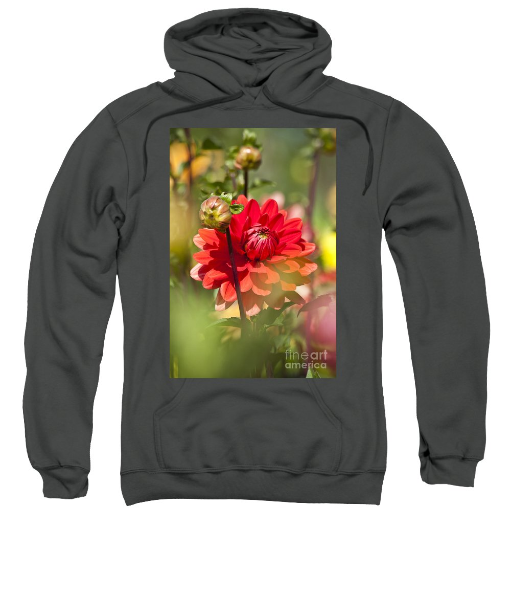 Heiko Sweatshirt featuring the photograph Behind The Scene by Heiko Koehrer-Wagner