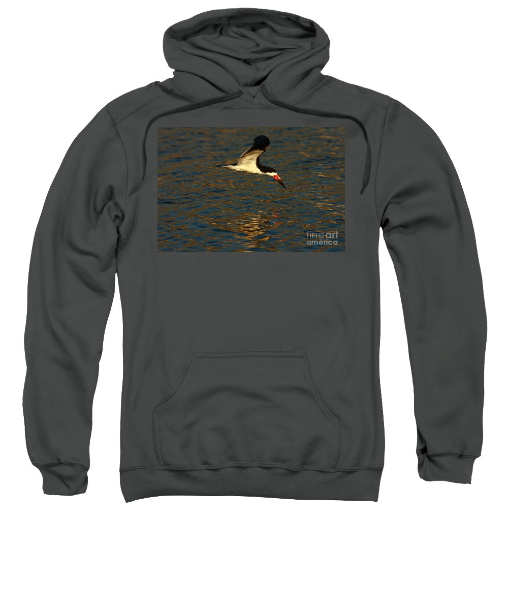 Beach Sweatshirt featuring the photograph Black Skimmer Reflections by John F Tsumas