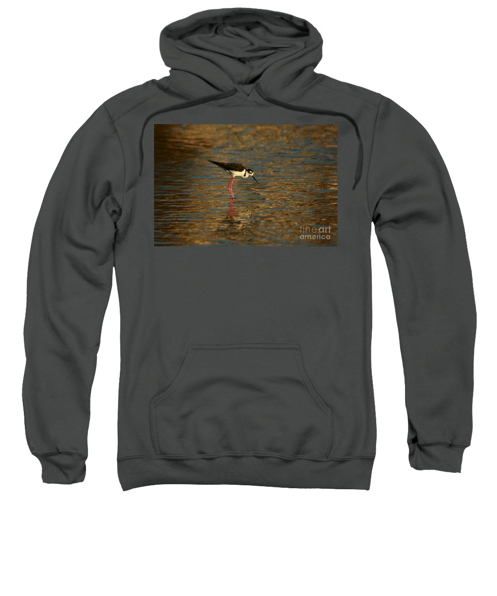Beach Sweatshirt featuring the photograph Blue And Gold Reflections by John F Tsumas