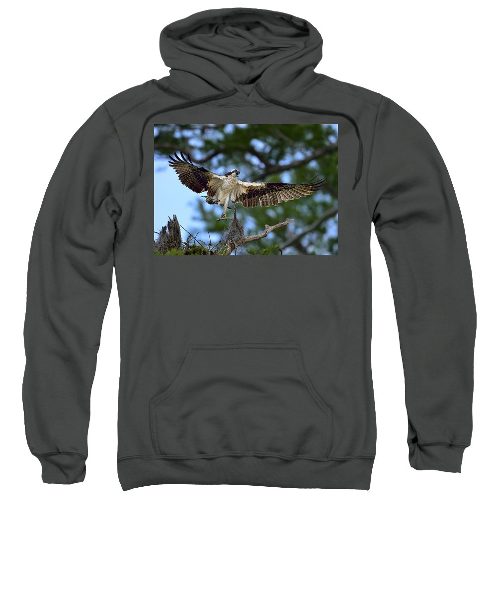Dodsworth Sweatshirt featuring the photograph Blue Cypress Landing by Bill Dodsworth