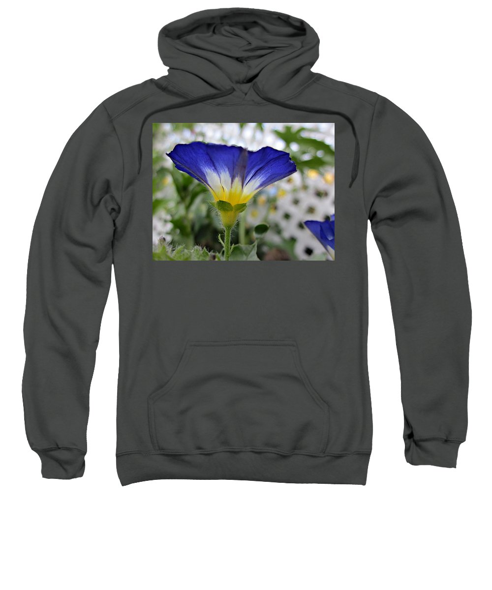 Morning Glory Sweatshirt featuring the photograph Blue Enchantment Side by MTBobbins Photography