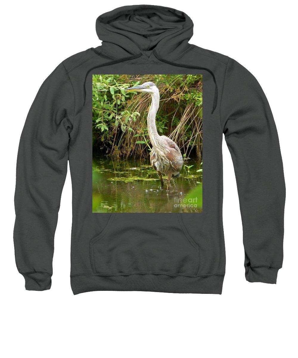 Blue Heron Sweatshirt featuring the photograph Blue Heron Reflection by Susan Garren
