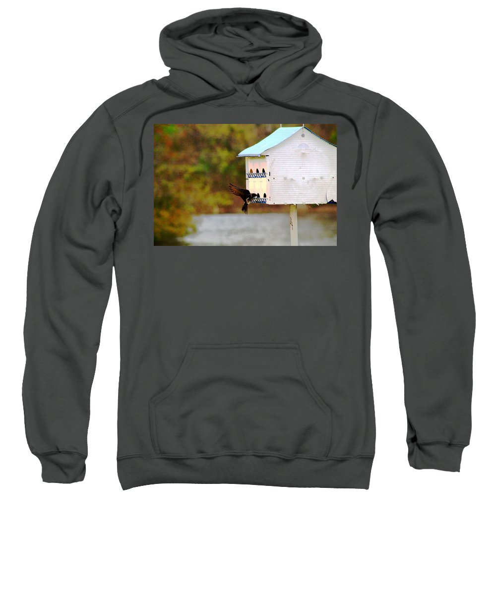 Sweet Bird Sweatshirt featuring the photograph Blue Martin Home by Mary Koval