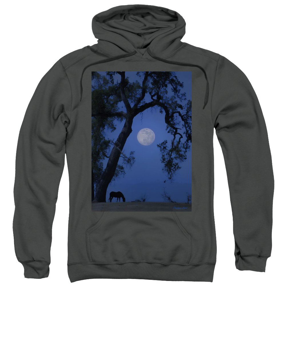 Horse Sweatshirt featuring the photograph Blue Moon Horse And Oak Tree by Stephanie Laird