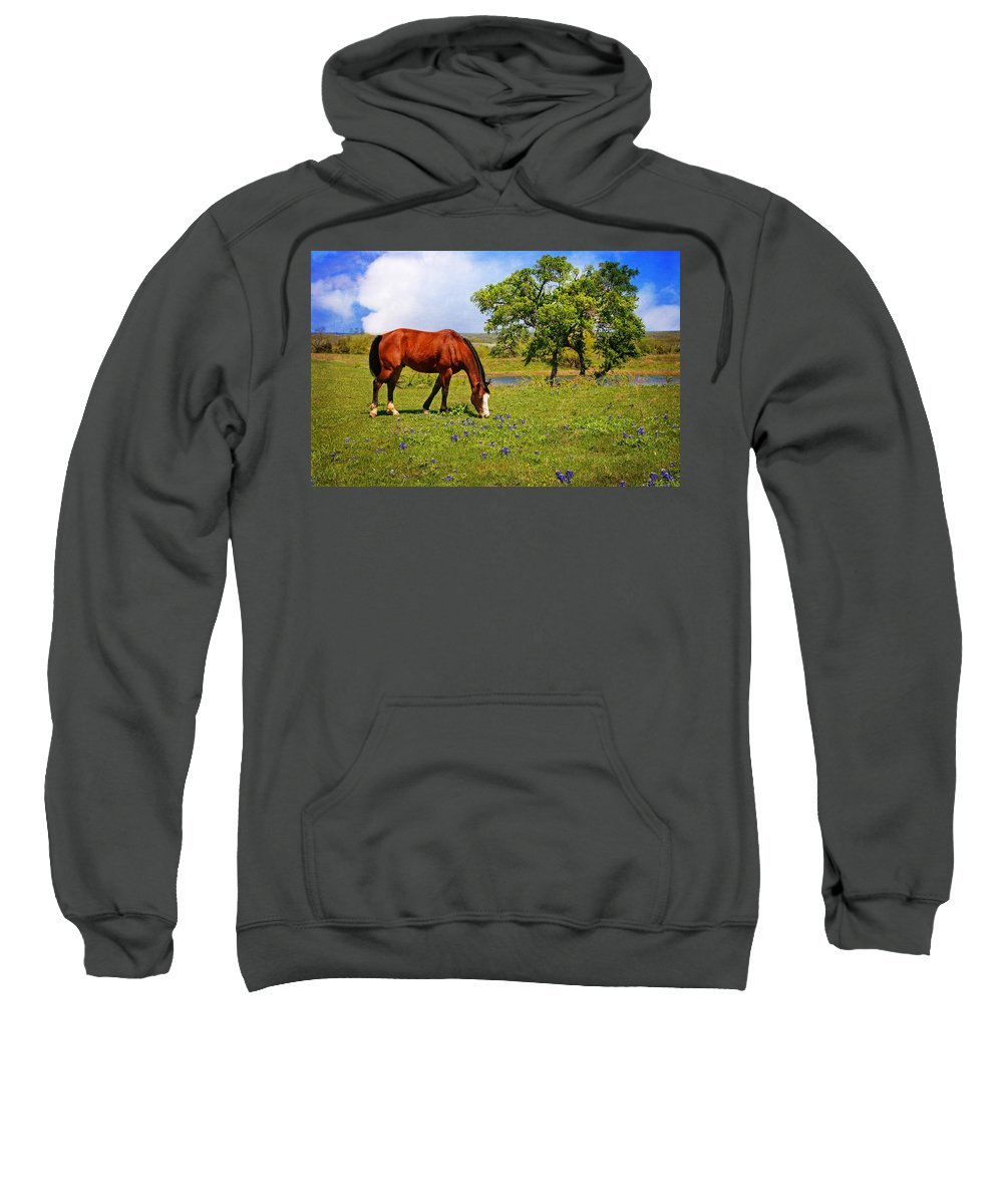 Wildflowers Sweatshirt featuring the photograph Bluebonnet Trail Delight by Lynn Bauer