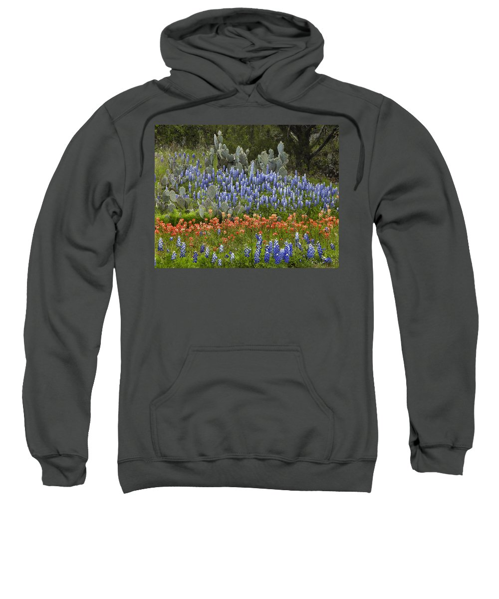 00442674 Sweatshirt featuring the photograph Bluebonnets Paintbrush And Prickly Pear by Tim Fitzharris