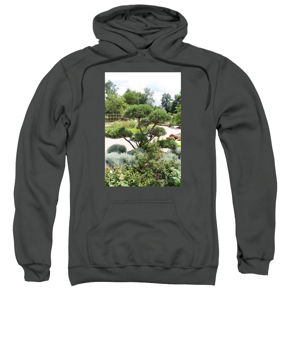 Bonsai Sweatshirt featuring the photograph Bonsai In The Park by Christiane Schulze Art And Photography
