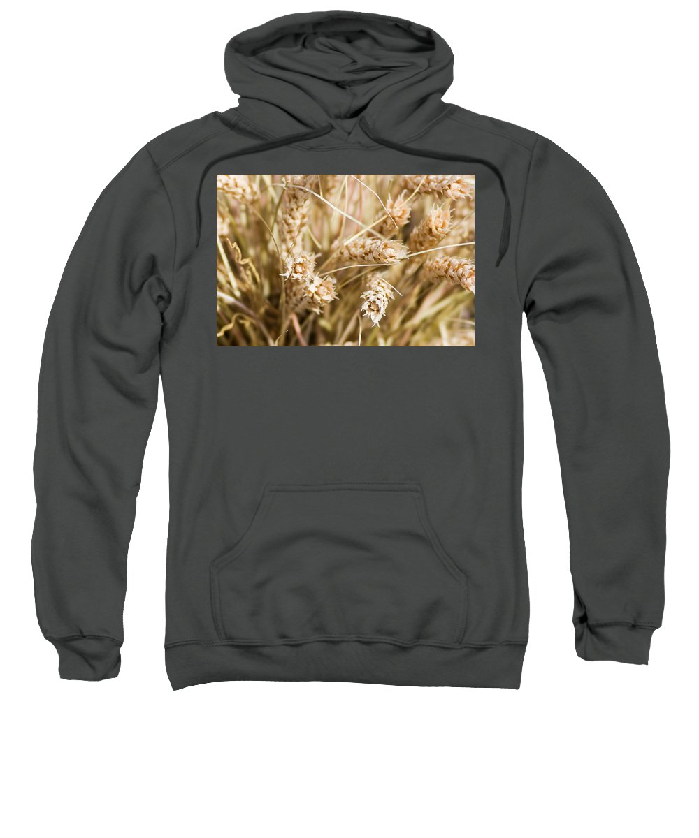 Agriculture Sweatshirt featuring the photograph Bounty Of Nature And Labour - Featured 3 by Alexander Senin
