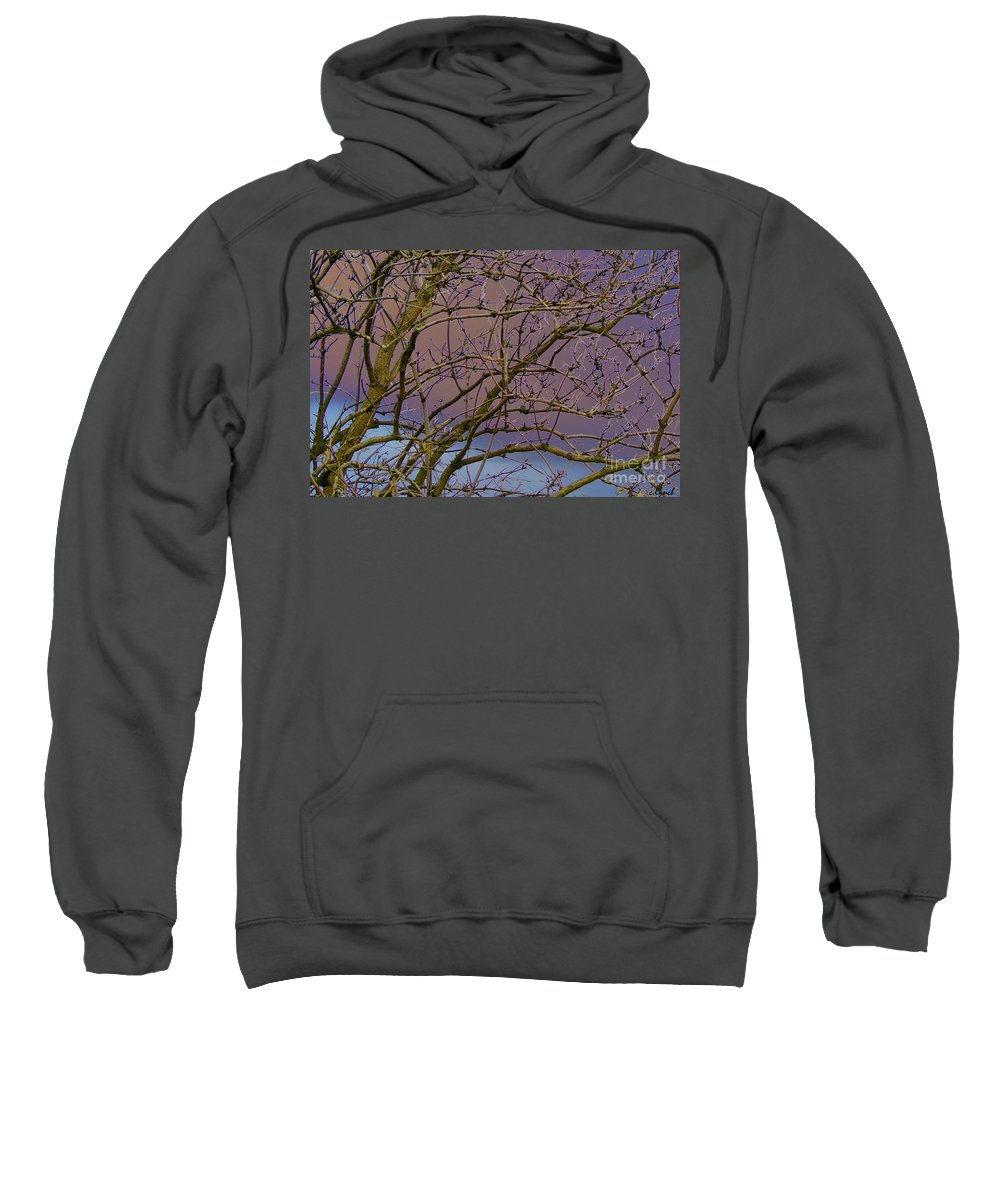 Branches Sweatshirt featuring the digital art Branches by Carol Lynch