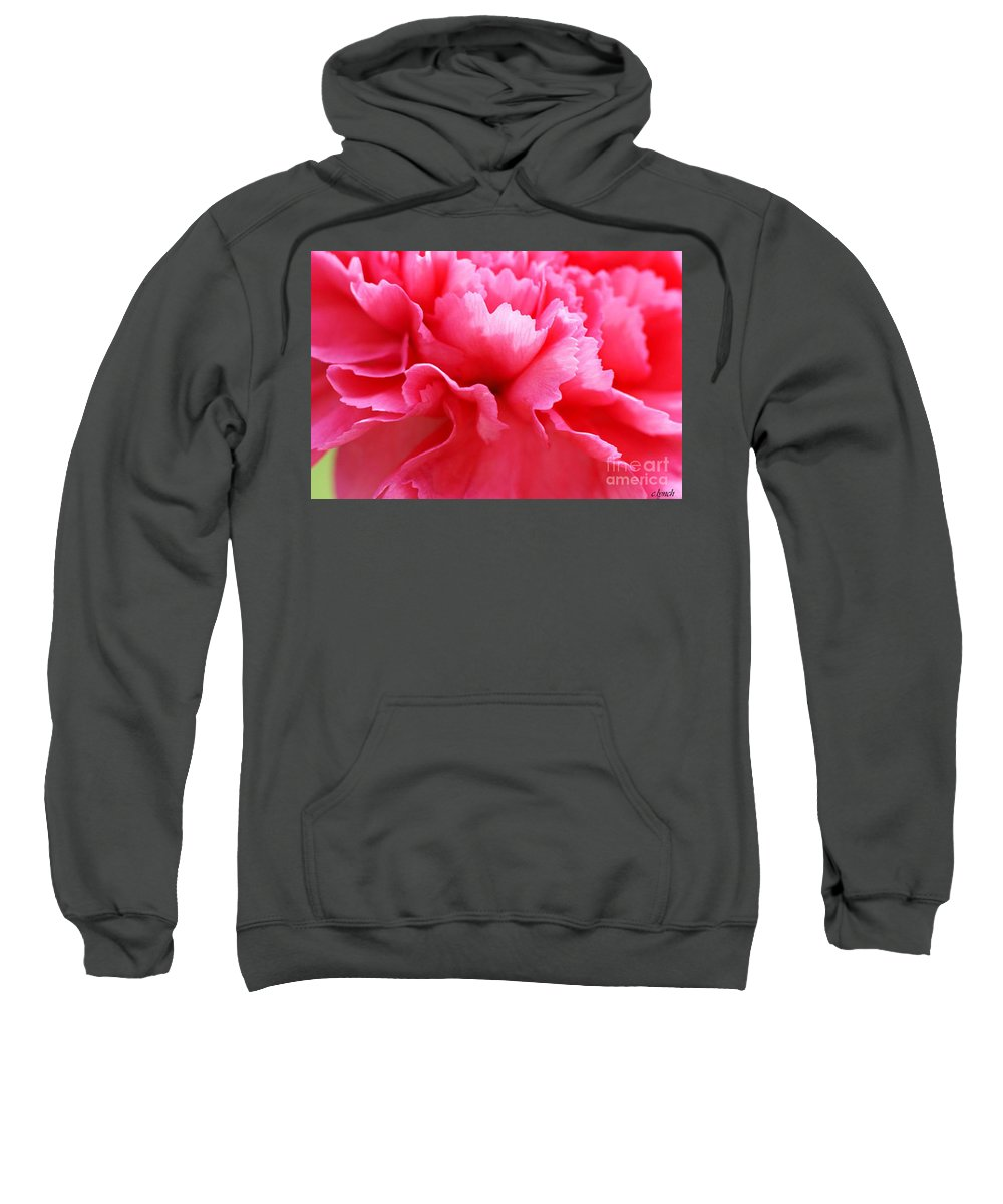 Carnation Sweatshirt featuring the photograph Bright Carnation by Carol Lynch