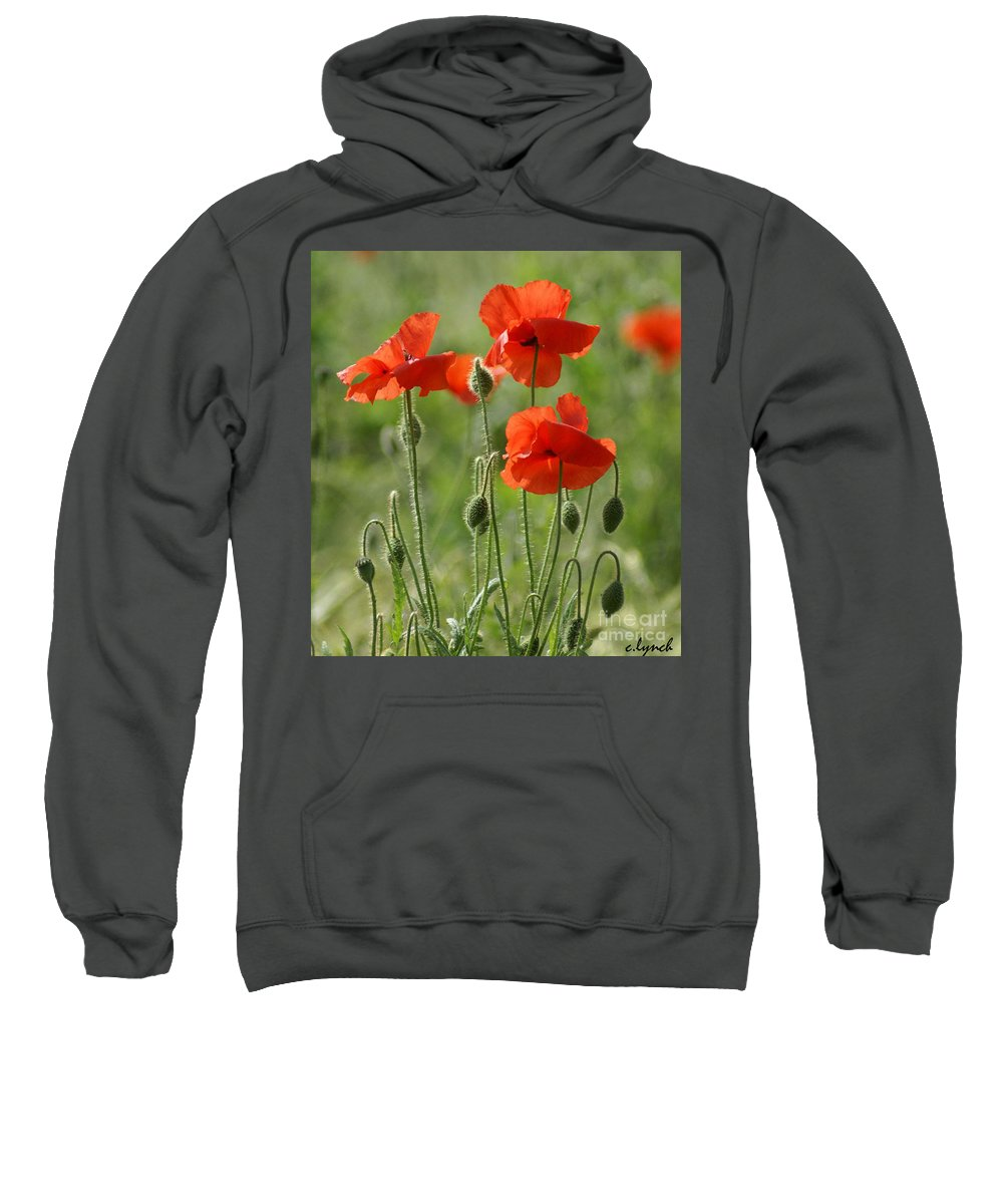 Poppies Sweatshirt featuring the photograph Bright Poppies 2 by Carol Lynch