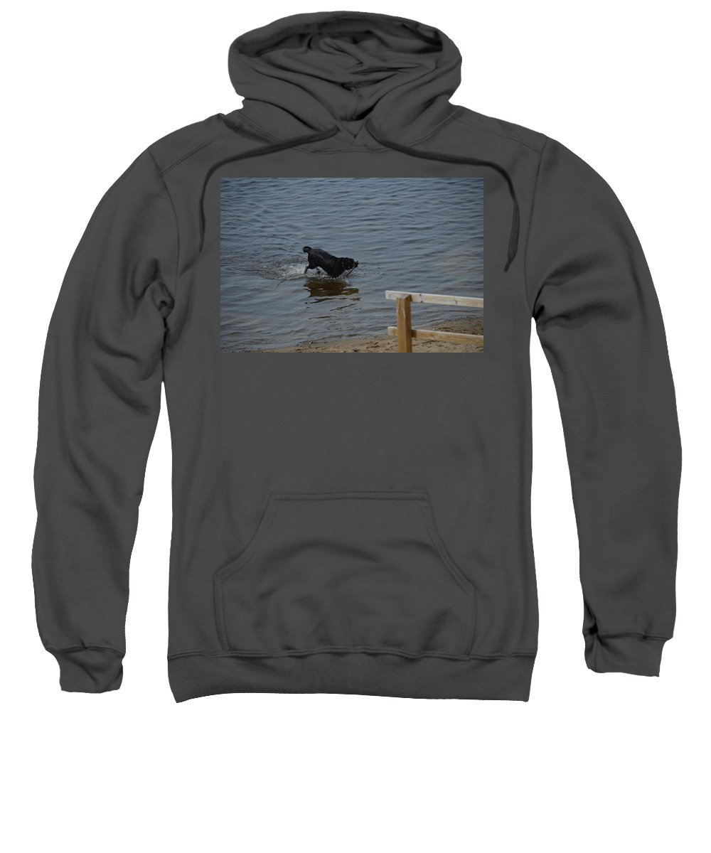Great Lakes Sweatshirt featuring the photograph Bringing It In by Linda Kerkau