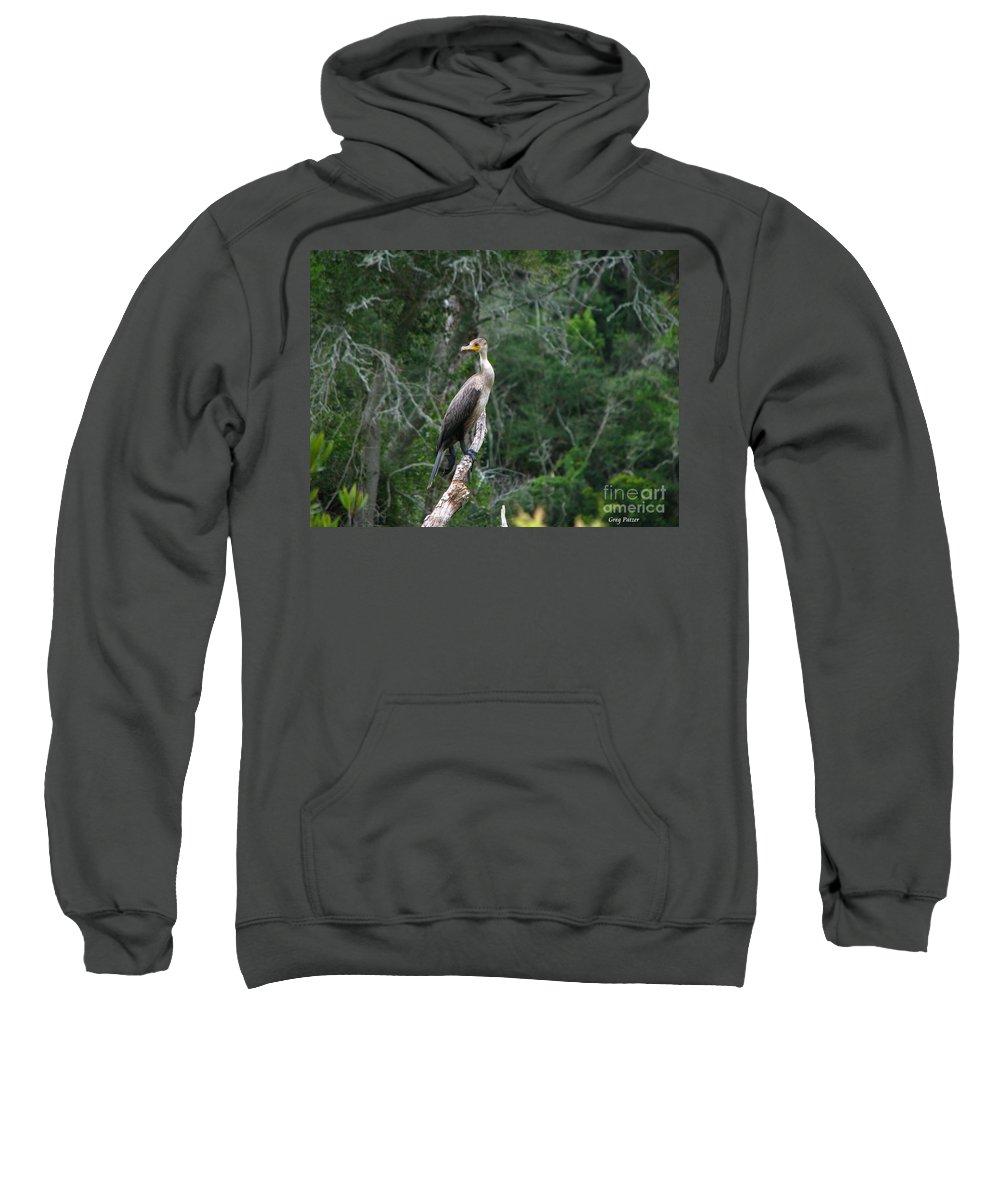 Patzer Sweatshirt featuring the photograph Bristol Cormorant by Greg Patzer