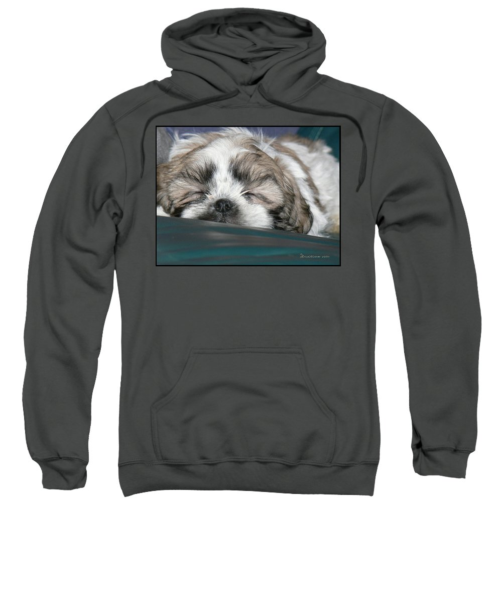Bubba Sweatshirt featuring the photograph Bubba by Ericamaxine Price