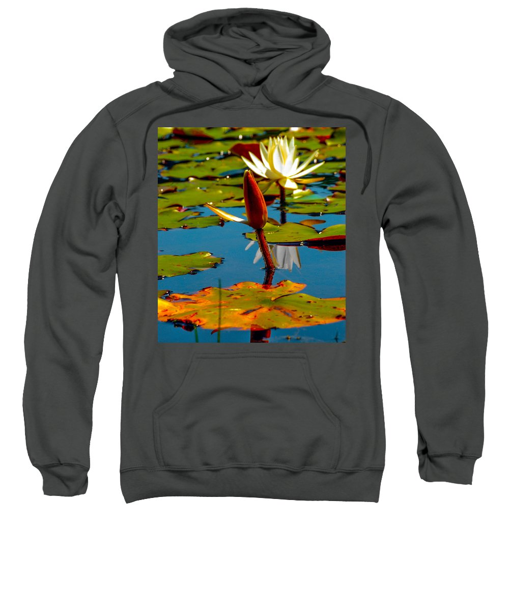 Optical Playground By Mp Ray Sweatshirt featuring the photograph Budding Lilies by Optical Playground By MP Ray