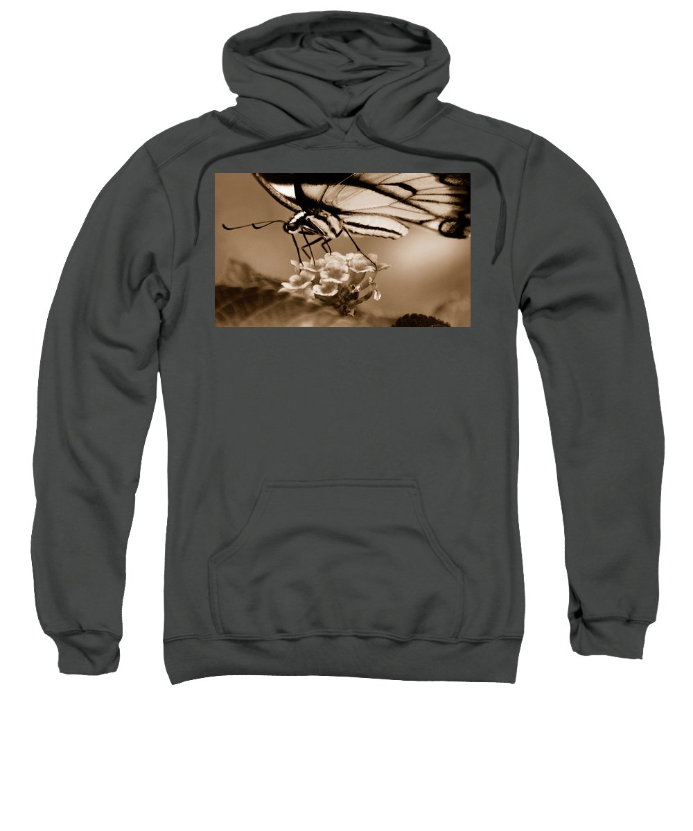 Butterfly Sweatshirt featuring the photograph Butterfly Whisper by Lori Tambakis