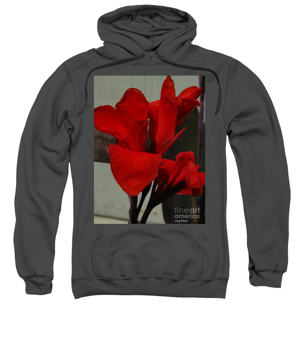 Patzer Sweatshirt featuring the photograph Canna by Greg Patzer