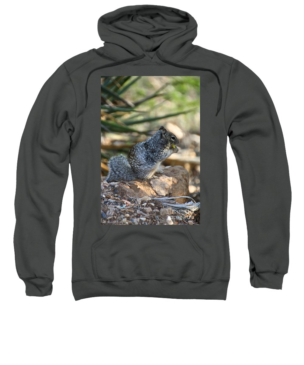 Squirrel Sweatshirt featuring the photograph Canyon Squirrel by Susan Herber