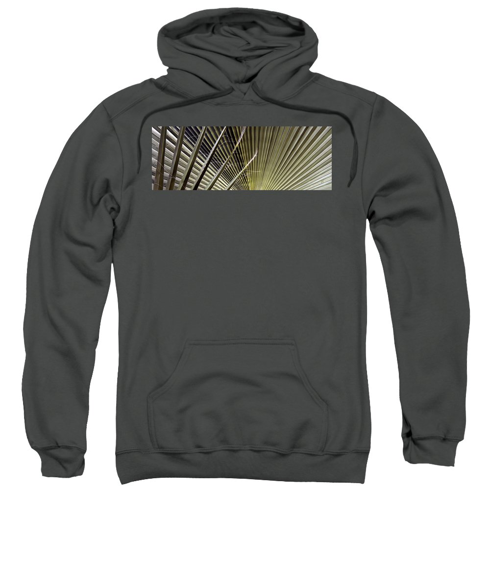 Botanical Abstract Sweatshirt featuring the photograph Captivation - Palm Leaf by Ben and Raisa Gertsberg