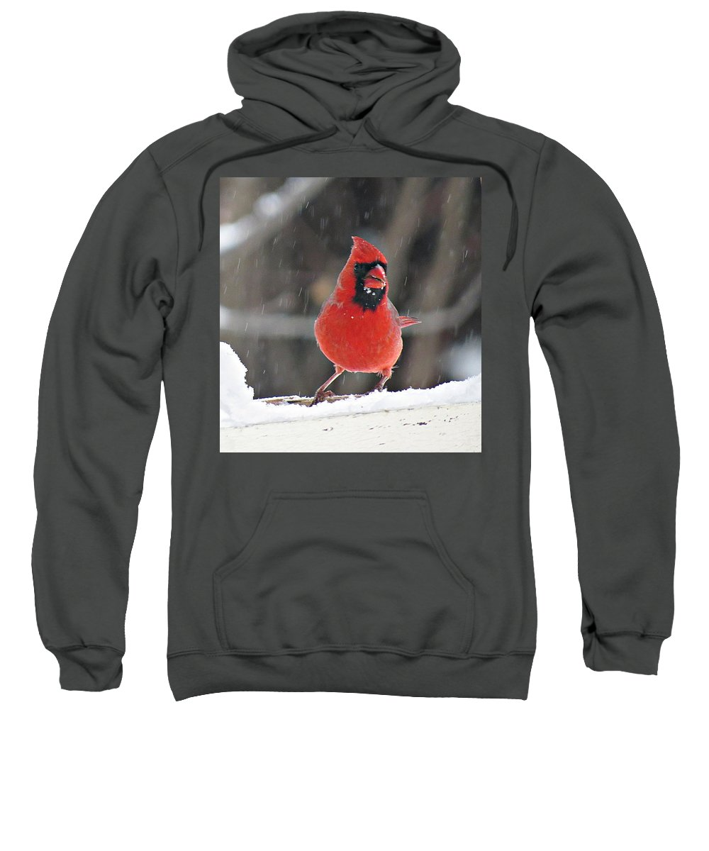 Male Cardinal Sweatshirt featuring the photograph Cardinal In Snowstorm by MTBobbins Photography