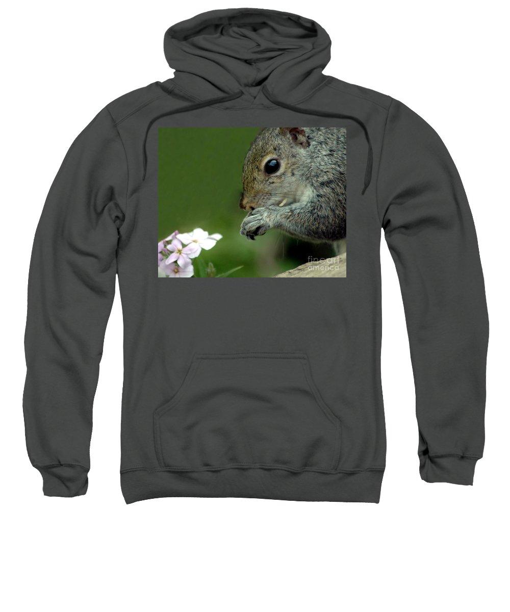 Chipmunk Sweatshirt featuring the photograph Chipmunk by Kathleen Struckle