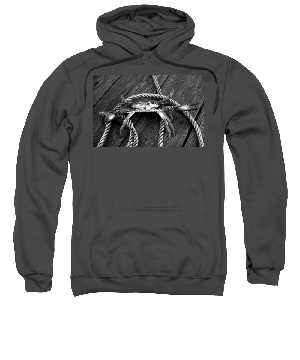 Crab Sweatshirt featuring the photograph Claws by Skip Willits