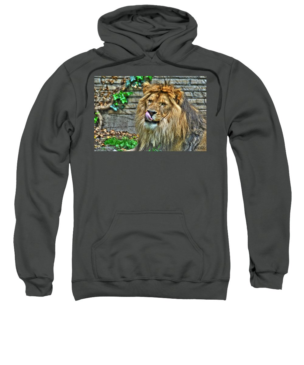 Lion Sweatshirt featuring the photograph Come A Lil Closer...mmmmm... by Michael Frank Jr