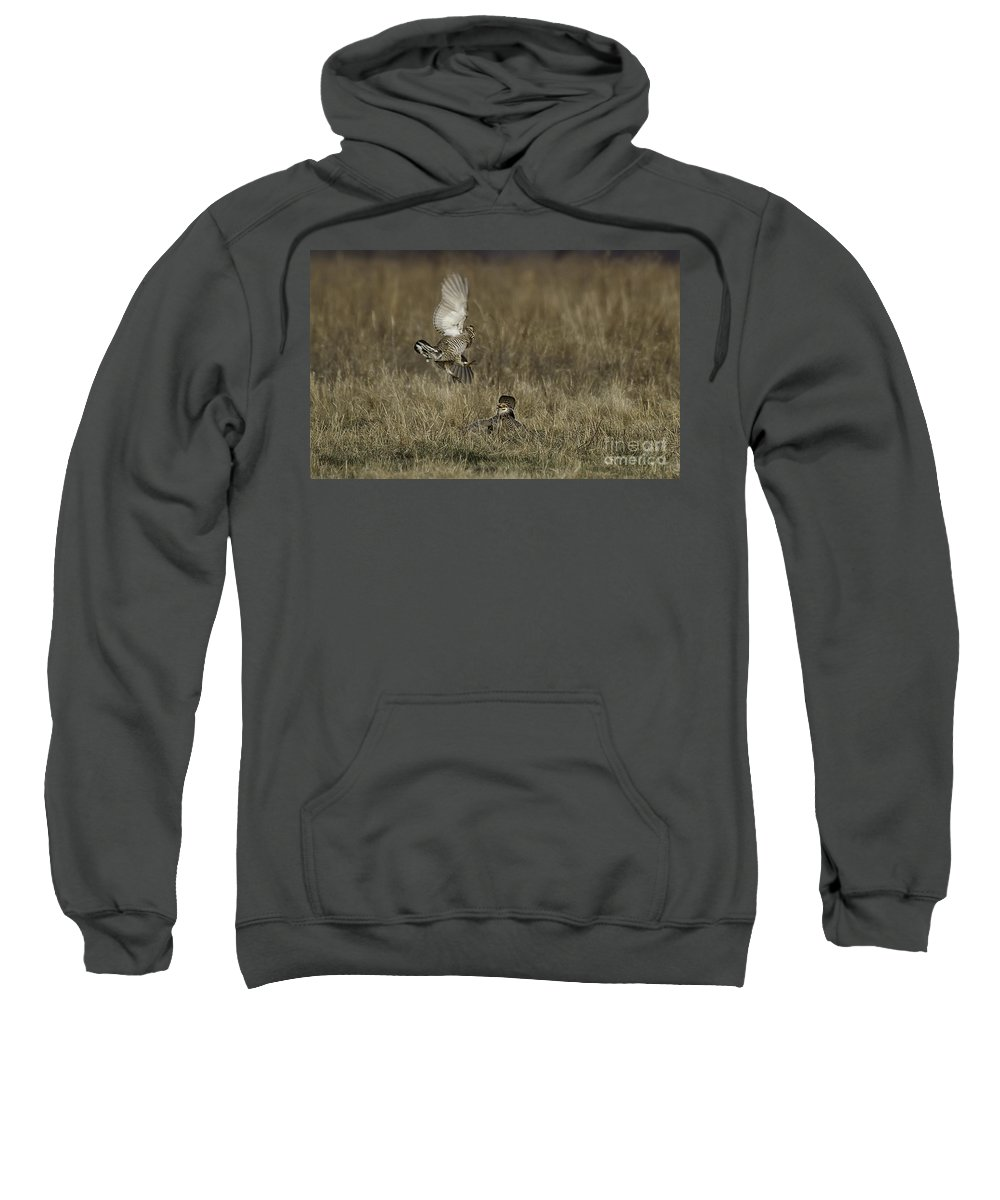Airie Chicken Sweatshirt featuring the photograph Coming In by Jan Killian