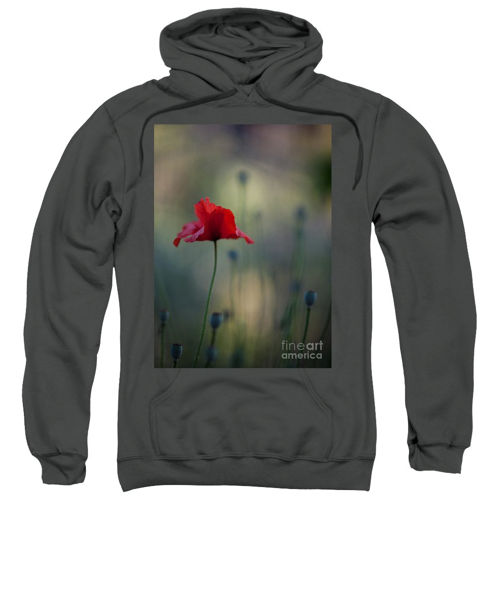 Flower Sweatshirt featuring the photograph Coquelicot Impression by Mike Reid