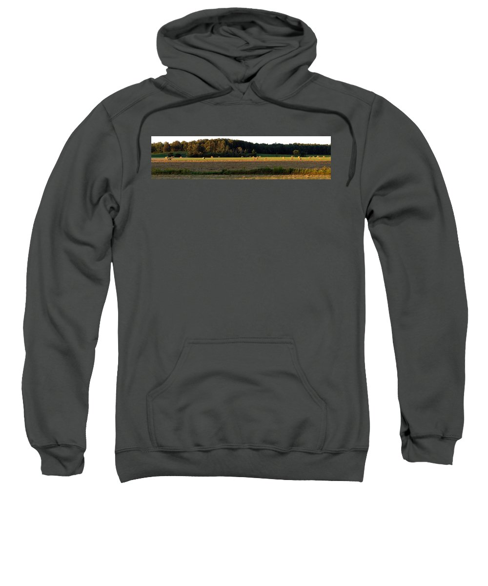 Panorama Sweatshirt featuring the photograph Country Bales by Doug Gibbons
