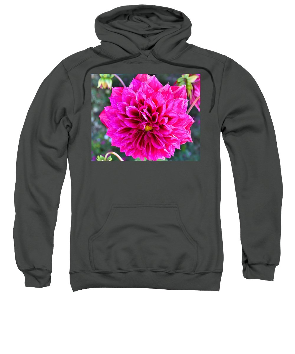 Pink Flower Sweatshirt featuring the photograph Creation by Kim Bemis