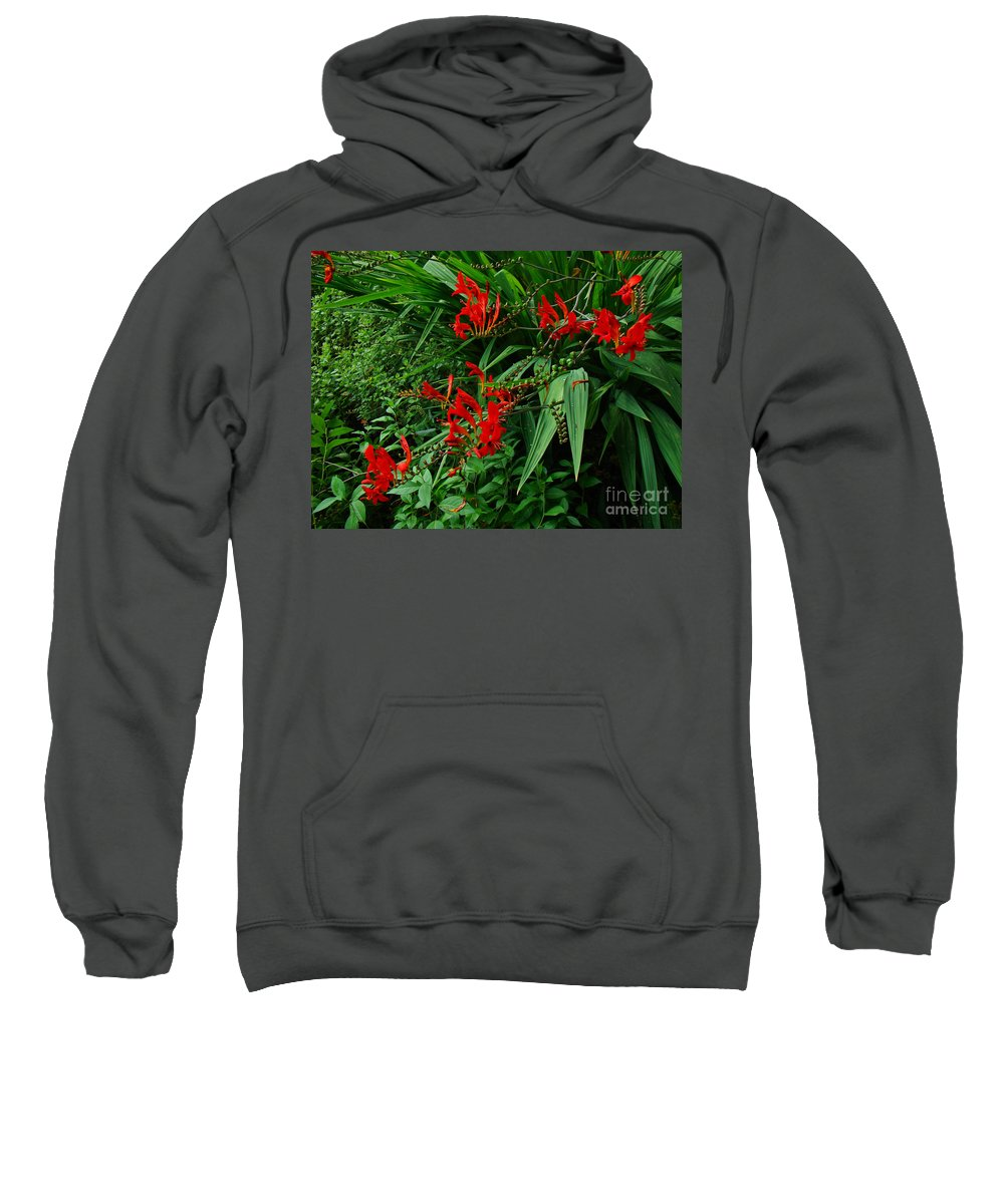 Crocosmia Sweatshirt featuring the photograph Crocosmia In Red by Mother Nature