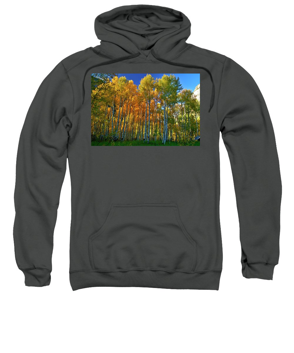 Fall Colors Sweatshirt featuring the photograph Crystal Grove by Jeremy Rhoades