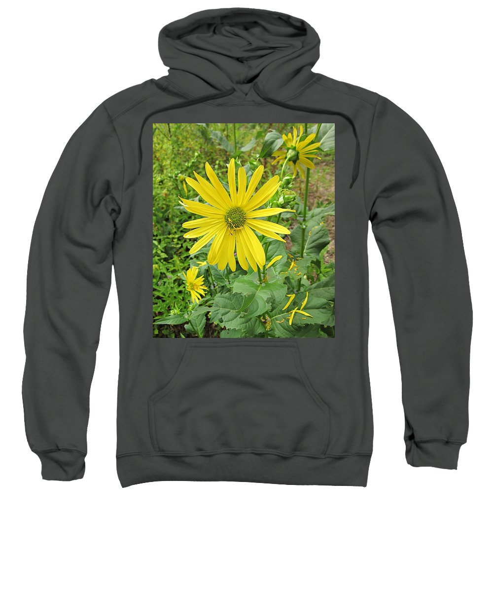Cup Plants Sweatshirt featuring the photograph Cup Plant Blooms by MTBobbins Photography
