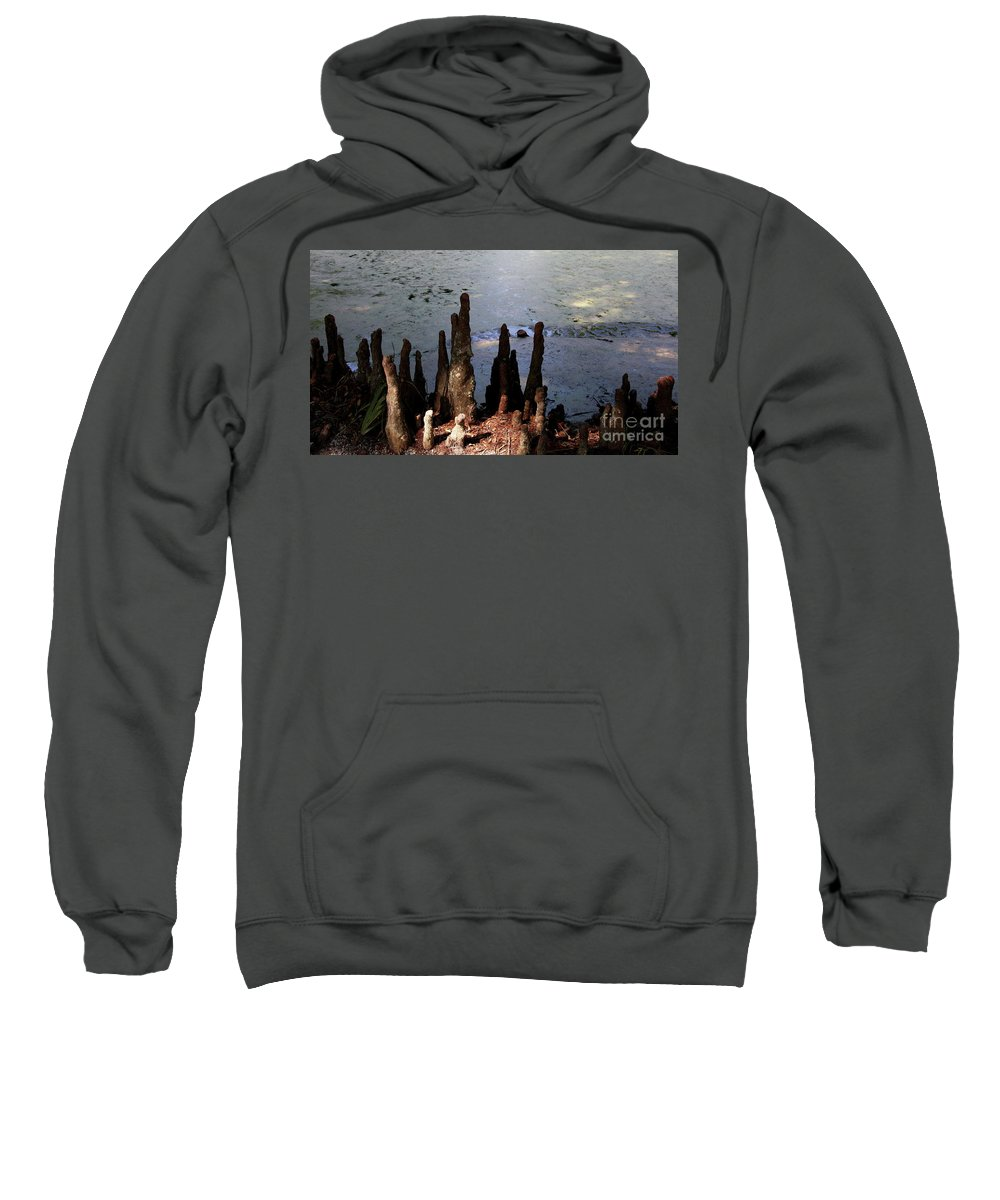 Cypress Roots Sweatshirt featuring the photograph Cypress Roots by Christiane Schulze Art And Photography